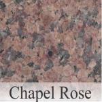 Chapel Rose